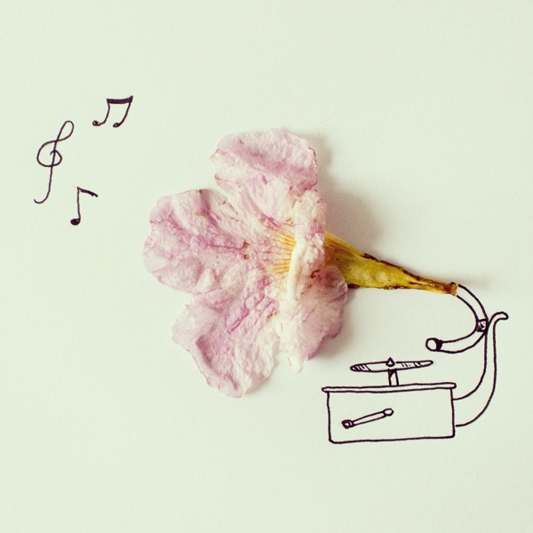 javier perez flower gramophone